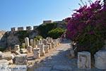 Kos town - Island of Kos - Greece  Photo 55 - Photo JustGreece.com