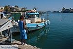 Kos town - Island of Kos - Greece  Photo 82 - Photo JustGreece.com
