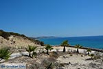 Paradise beach - Island of Kos -  Photo 6 - Photo JustGreece.com