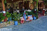JustGreece.com Zia - Island of Kos -  Photo 50 - Foto van JustGreece.com