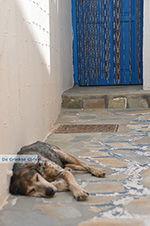 Koufonissi - Koufonissia islands | Cyclades | Greece  | nr 214 - Photo JustGreece.com