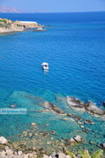 JustGreece.com Achlia | Lassithi Crete | Photo 6 - Foto van JustGreece.com