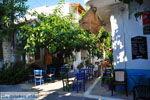 JustGreece.com Mirtos | Lassithi Crete | Photo 1 - Foto van JustGreece.com