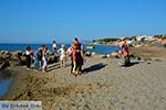 JustGreece.com Agia Marina Crete - Chania Prefecture - Photo 20 - Foto van JustGreece.com