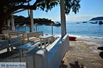 JustGreece.com Agia Pelagia Crete - Heraklion Prefecture - Photo 43 - Foto van JustGreece.com