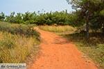 JustGreece.com Agioi Apostoli Crete - Chania Prefecture - Photo 32 - Foto van JustGreece.com