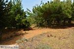 Agioi Apostoli Crete - Chania Prefecture - Photo 34 - Photo JustGreece.com