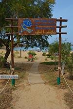 Agioi Apostoli Crete - Chania Prefecture - Photo 48 - Photo JustGreece.com