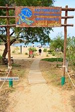 JustGreece.com Agioi Apostoli Crete - Chania Prefecture - Photo 49 - Foto van JustGreece.com