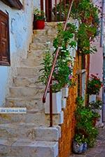 JustGreece.com Chania city Crete - Chania Prefecture - Photo 27 - Foto van JustGreece.com