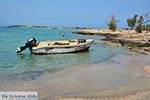 JustGreece.com Elafonisi Crete - Chania Prefecture - Photo 1 - Foto van JustGreece.com