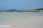 JustGreece.com Elafonisi Crete - Chania Prefecture - Photo 19 - Foto van JustGreece.com