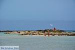 Elafonisi Crete - Chania Prefecture - Photo 20 - Photo JustGreece.com