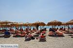 JustGreece.com Elafonisi Crete - Chania Prefecture - Photo 22 - Foto van JustGreece.com