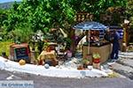 JustGreece.com Elos Crete - Chania Prefecture - Photo 5 - Foto van JustGreece.com