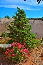 Gouverneto monastery Crete - Chania Prefecture - Photo 15 - Photo JustGreece.com