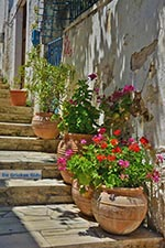 Katalagari Crete - Heraklion Prefecture - Photo 13 - Photo JustGreece.com
