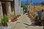 Katalagari Crete - Heraklion Prefecture - Photo 16 - Photo JustGreece.com