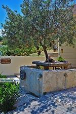 JustGreece.com Katalagari Crete - Heraklion Prefecture - Photo 19 - Foto van JustGreece.com