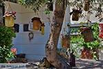 Katalagari Crete - Heraklion Prefecture - Photo 20 - Photo JustGreece.com