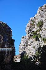 Kotsifos gorge | Rethymnon Crete | Photo 23 - Photo JustGreece.com