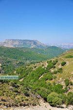 nature Central Rethymnon Crete | Greece  Photo 6 - Photo JustGreece.com