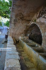 JustGreece.com Krasi Crete - Heraklion Prefecture - Photo 9 - Foto van JustGreece.com