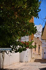 JustGreece.com Loutra Crete - Rethymno Prefecture - Photo 6 - Foto van JustGreece.com