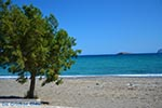 JustGreece.com Pachia Ammos Crete - Lassithi Prefecture - Photo 19 - Foto van JustGreece.com