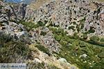 Preveli beach Crete - Rethymno Prefecture - Photo 2 - Photo JustGreece.com