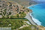 JustGreece.com Preveli beach Crete - Rethymno Prefecture - Photo 6 - Foto van JustGreece.com