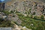 Preveli beach Crete - Rethymno Prefecture - Photo 17 - Photo JustGreece.com