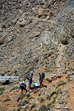 JustGreece.com Sfakia Crete - Chania Prefecture - Photo 33 - Foto van JustGreece.com