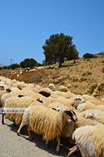 Triopetra Crete - Rethymno Prefecture - Photo 2 - Photo JustGreece.com