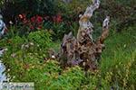 Agios Nikitas - Lefkada Island -  Photo 46 - Photo JustGreece.com