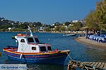 Alinda - Island of Leros - Dodecanese islands Photo 22 - Photo JustGreece.com
