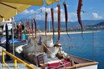 Molyvos Lesbos | Greece | Greece  57 - Photo JustGreece.com