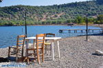 Near Pyrra and Achladeri | Lesbos Greece | Greece  6 - Photo JustGreece.com