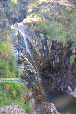 Near Waterfalls Pesas | Lesbos Greece | Greece  30 - Photo JustGreece.com