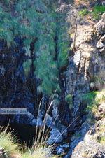 Near Waterfalls Pesas | Lesbos Greece | Greece  31 - Photo JustGreece.com