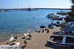 JustGreece.com Plomari | Lesbos Greece | Greece  15 - Foto van JustGreece.com