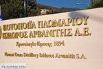 Plomari | Lesbos Greece | Greece  84 - Photo JustGreece.com