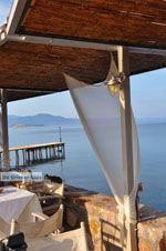 JustGreece.com Molyvos Lesbos | Greece | Greece  151 - Foto van JustGreece.com