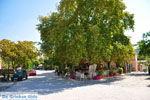 JustGreece.com Agia Paraskevi Lesbos | Greece | Greece  15 - Foto van JustGreece.com