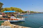 Skala Kallonis Lesbos | Greece | Greece  29 - Photo JustGreece.com