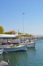 Skala Kallonis Lesbos | Greece | Greece  30 - Photo JustGreece.com