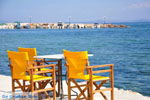 Mistegna - Skala Mistegna | Lesbos | Greece  7 - Photo JustGreece.com