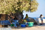 Sykaminia - Skala Sykaminia | Lesbos | Greece  10 - Photo JustGreece.com