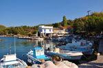 Sykaminia - Skala Sykaminia | Lesbos | Greece  12 - Photo JustGreece.com