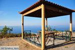 Sykaminia - Skala Sykaminia | Lesbos | Greece  41 - Photo JustGreece.com